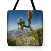 Joshua Trees Number 357 Tote Bag