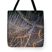 Journey Inward Tote Bag