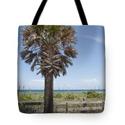 Juan Ponce De Leon Landing Site In Florida Tote Bag