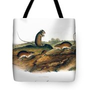 Jumping Mouse, 1846 Tote Bag