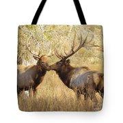 Junior Meets Bull Elk Tote Bag by Robert Frederick