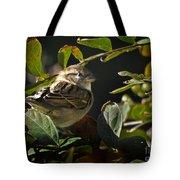 Junior Sparrow Tote Bag