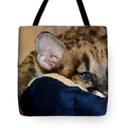 Just A Big Kitten Tote Bag