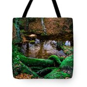 Just A Bit Of Water Tote Bag