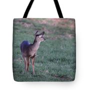 Just A Little Baby Tote Bag