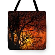 Just A Pretty Sunrise Tote Bag