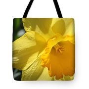 Just For The Frill Of It Tote Bag