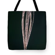 Just Grass Tote Bag
