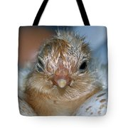 Just Hatched Tote Bag