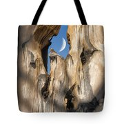 Just Passing By Tote Bag