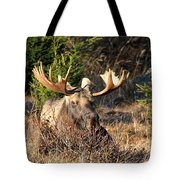 Just Resting Tote Bag