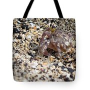Just Taking A Walk Tote Bag