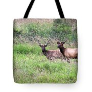 Just The Guys Tote Bag