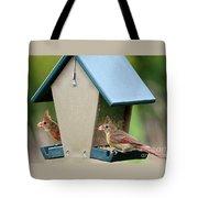 Juvenile Cardinals On Feeder Tote Bag