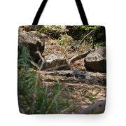 Juvenile Nile Crocodile Tote Bag