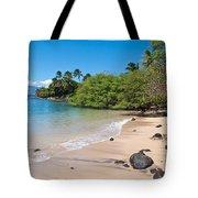 Kahana Beach Tote Bag