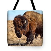 Kansas Buffalo Tote Bag