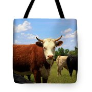 Kansas Country Cow's With Blue Sky And Grass Tote Bag