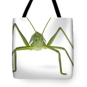 Katydid Silaka Nature Reserve South Tote Bag