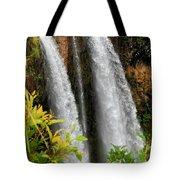 Kauai Waterfall Tote Bag