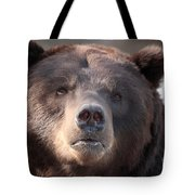 Keep Your Eye On The Camera Tote Bag