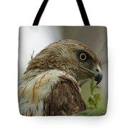 Keeping An Eye On You Tote Bag