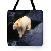 Kermode Bear On Boulder Hunting Salmon Tote Bag