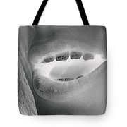 Kids With Candy Infrared Tote Bag