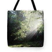 Killarney National Park, Co Kerry Tote Bag