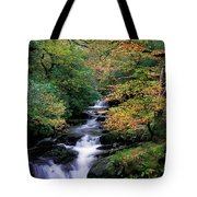 Killarney National Park, Ring Of Kerry Tote Bag