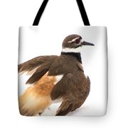 Killdeer - Show Off In The Spring Snow  Tote Bag