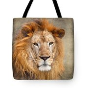 King Of Beasts Portrait Of A Lion Tote Bag