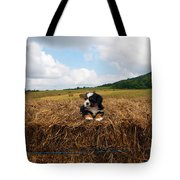 King Of The Hay Tote Bag