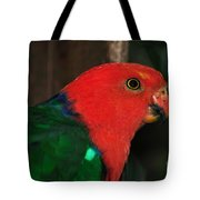 King Parrot - Male 2 Tote Bag