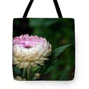 King Rose Strawflower Tote Bag