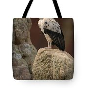 King Vulture Sarcoramphus Papa Perched Tote Bag by Pete Oxford