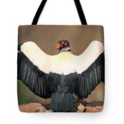 King Vulture Sarcoramphus Papa Sunning Tote Bag by Pete Oxford