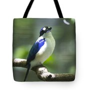 Kingfisher V2 Tote Bag