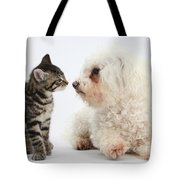 Kitten & Pup Confrontation Tote Bag