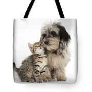 Kitten And Daxie-doodle Puppy Tote Bag