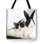 Kitten And Dutch Rabbit Tote Bag