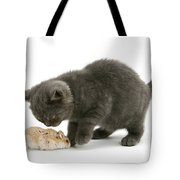 Kitten And Hamster Tote Bag