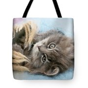 Kitten In Blanket Tote Bag