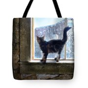 Kitten On Windowsill Of Abandoned House Tote Bag