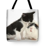 Kitten With Guinea Pig Tote Bag