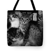 Kittens Corner Tote Bag