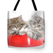 Kittens In A Food Bowl Tote Bag