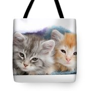 Kittens Under Blanket Tote Bag