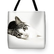 Kitty Cat Greeting Card Get Well Soon Tote Bag