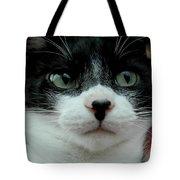 Kitty Closeup Tote Bag